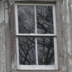 The Truth About Old Wood Windows