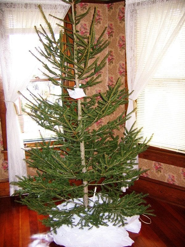 Old Fashioned Christmas Tree S Style OldHouseGuy Blog - Old fashioned christmas decorating ideas
